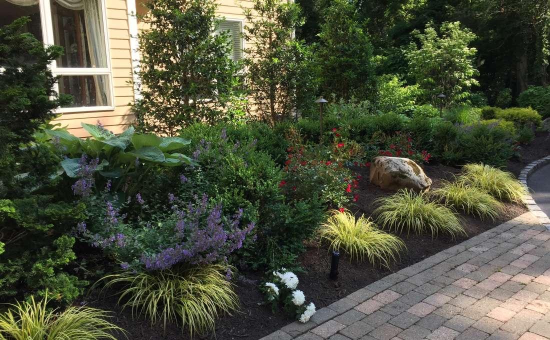 residential landscape planting design autumn leaf long island