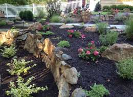 Perennial landscape planting with roses and moss rock retaining wall