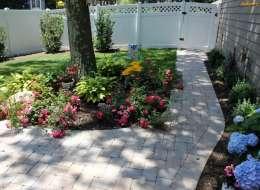 Knock out rose and hosta landscape plant bed