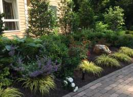 Front entry planting with evergreen shrubs and flowers