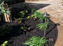 Flowering perennial plants to accent Cambridge walkway