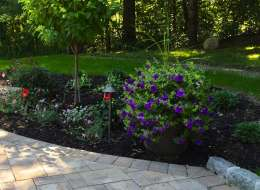 Flowering annuals and perennials accenting a front walkway