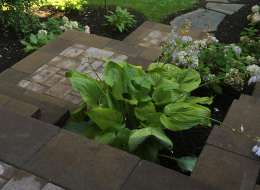 Accent plantings for walkway and steps
