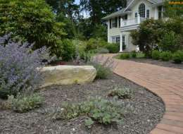 Russian sage with ornamental boulder plant bed and brick walkway