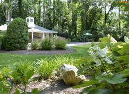 Oakleaf hydrangea and daylily plant bed