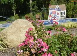 Drift rose and ornamental grass landscape plant bed