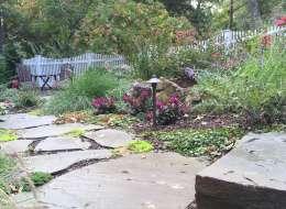 Traditional perennial plants with irregular bluestone pathway