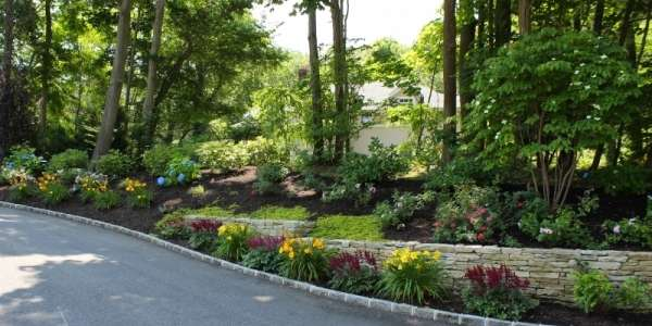 False spirea astilbe and daylily plant bed with natural stone retaining wall